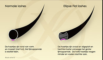 Ellipse Flat Lashes C-Krul (Enkele Lengtes)