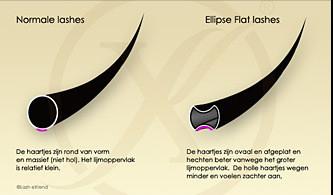 Ellipse Flat Lashes D-Krul (Gemixte lengtes)