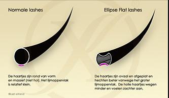 Ellipse Flat Lashes C-Krul (Gemixte Lengtes)